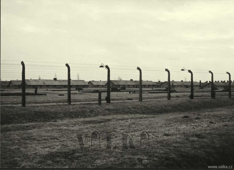 Osvetim_Auschwitz_BW_056
