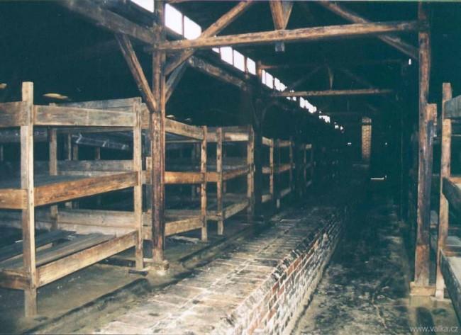 Osvětim II. Březina - vojenské stáje - obydlí pro 800 vězňů zevnitř. Na těchto postelích spaly desítky lidí najednou